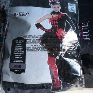 Jesterina costume